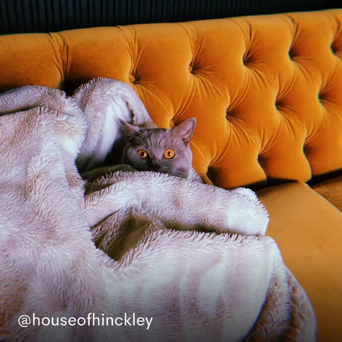 Hugo Chesterfield Sofa