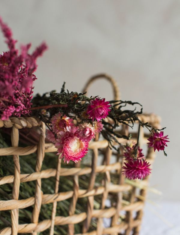 Dried Natural Pink Straw Flowers