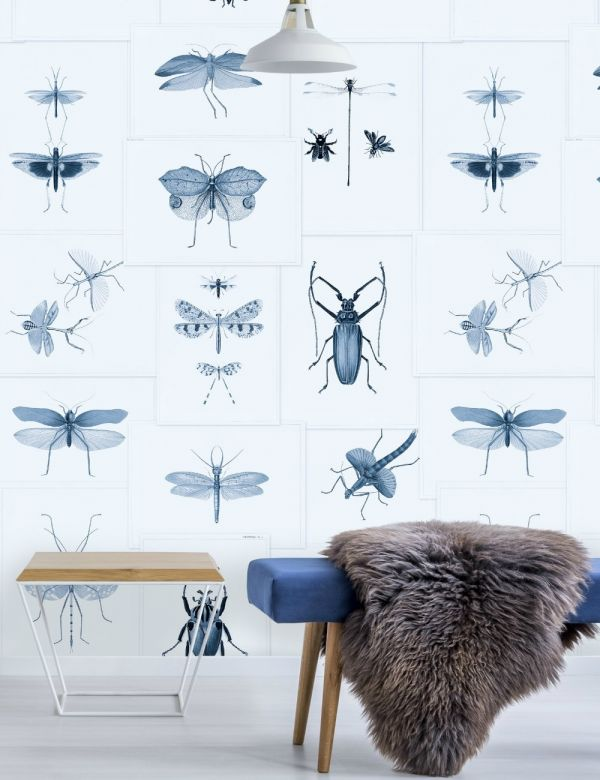 Mind The Gap Wallpaper Collection - Entomology Blue