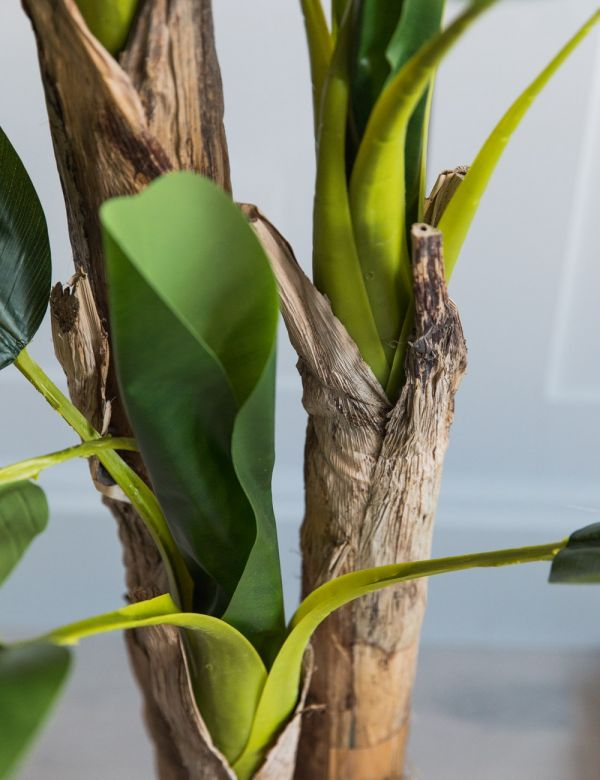 Faux Banana Palm Plant