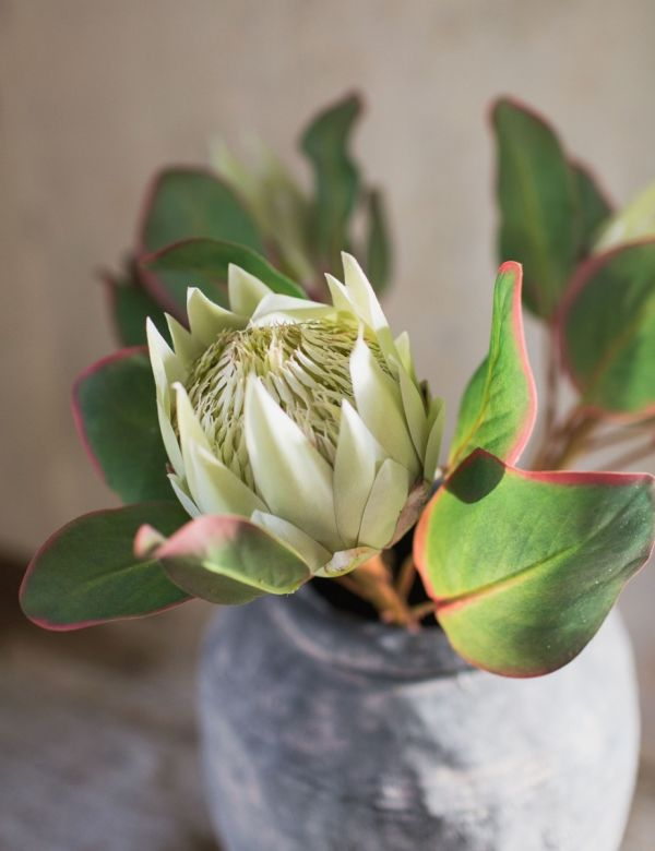 Faux Large Protea Stem