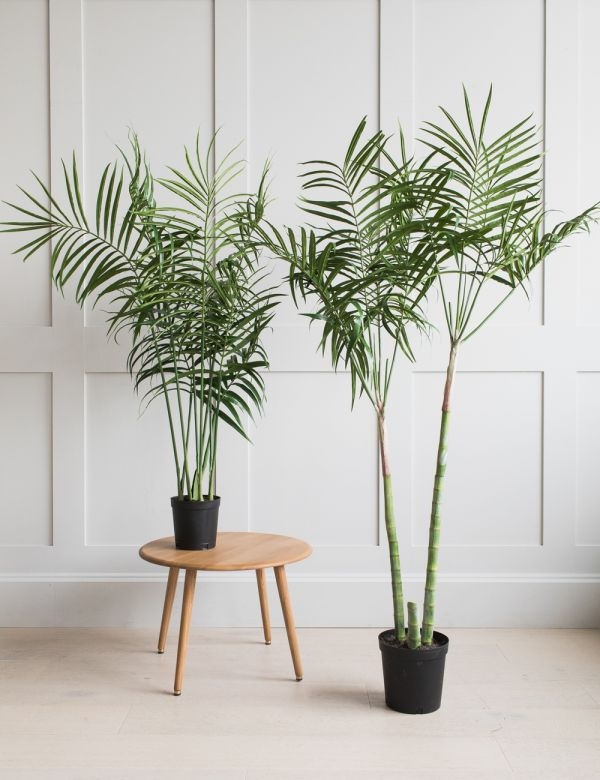Faux Palm Plant - Two Sizes Available