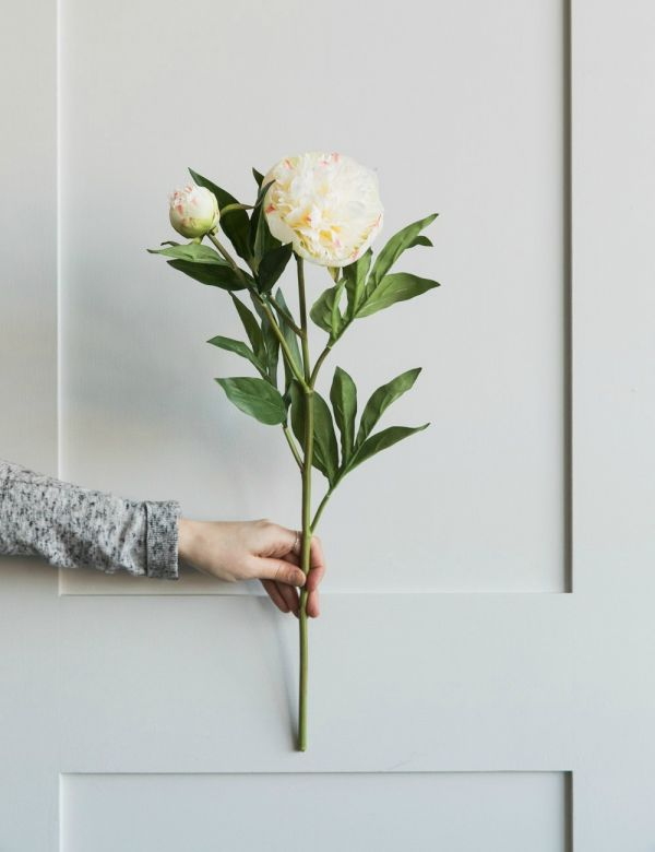 Faux White Double Peony Stem