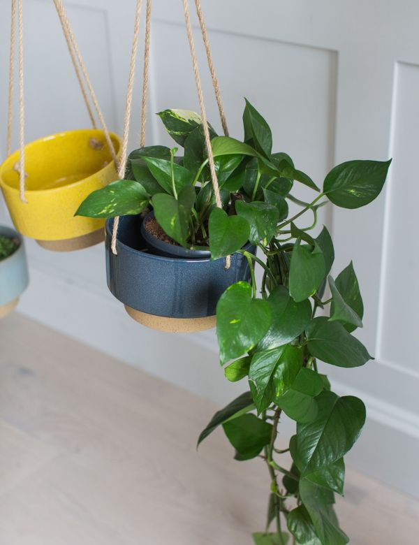 Hanging Two-Tone Plant Pot - Three Colours Available