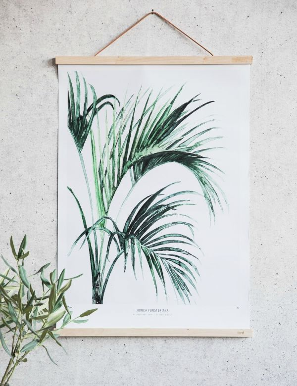 Limited Edition Botanical Art Print