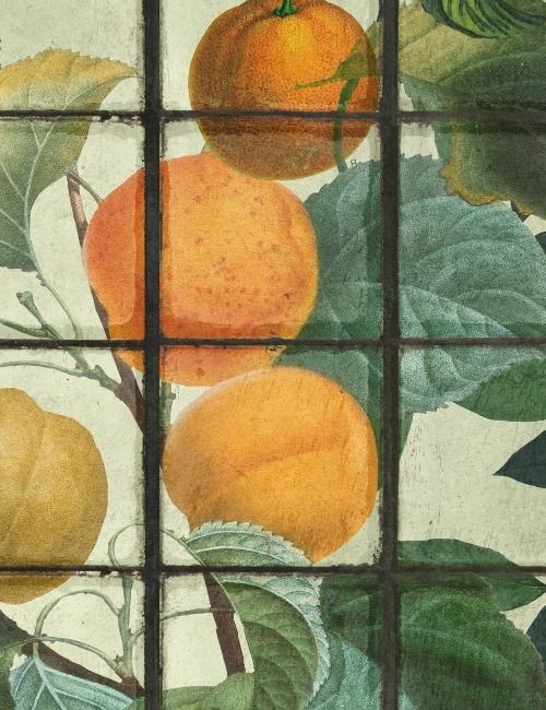 Mind The Gap Wallpaper Collection - Orangerie
