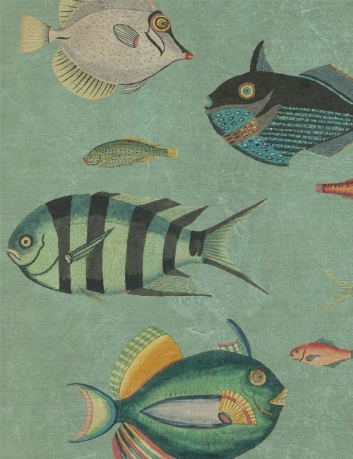 Mind The Gap Wallpaper Collection - Poissons
