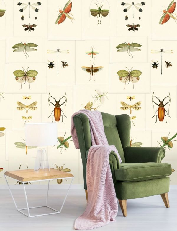 Mind The Gap Wallpaper Collection - Entomology