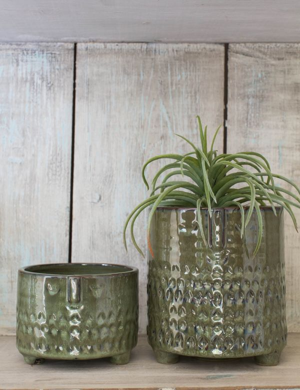 Eric & Ernie Face Plant Pots - Two Sizes Available