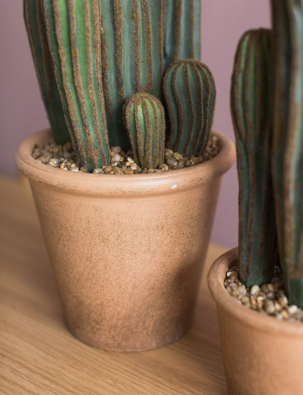 Faux Cacti - Two Sizes Available