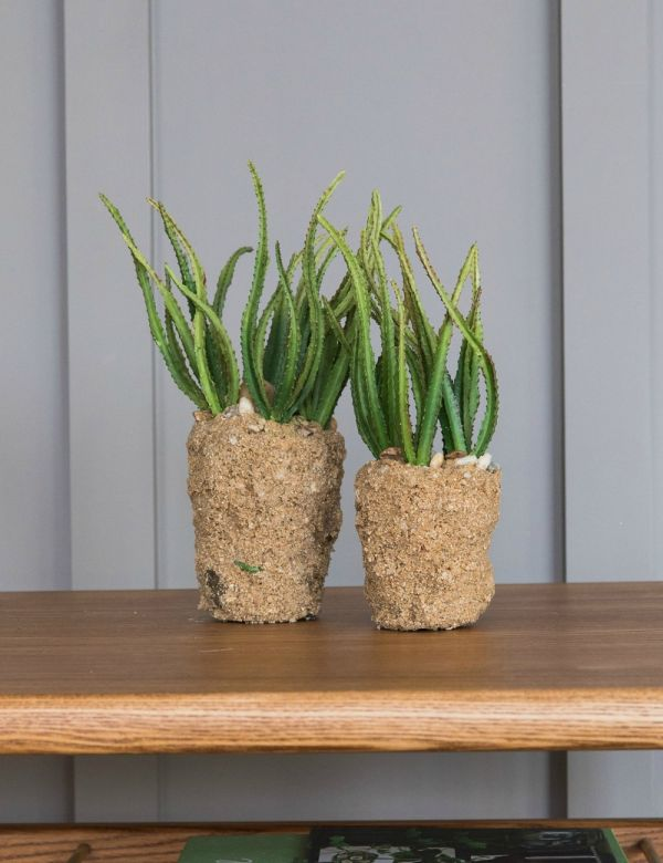 Faux Cactus - Large or Small