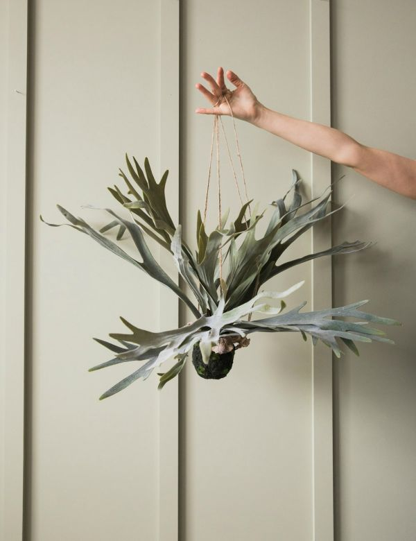 Faux Hanging Staghorn Plant