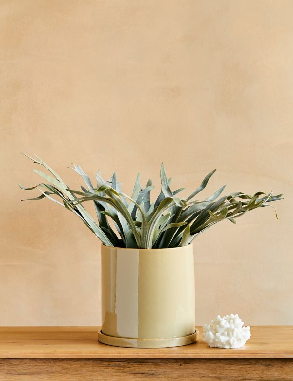 Large Beige Plant Pot With Saucer