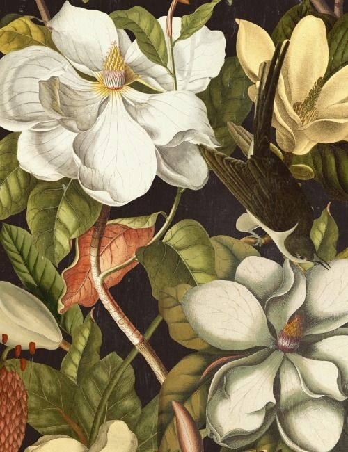 Mind The Gap Wallpaper Collection - Magnolia