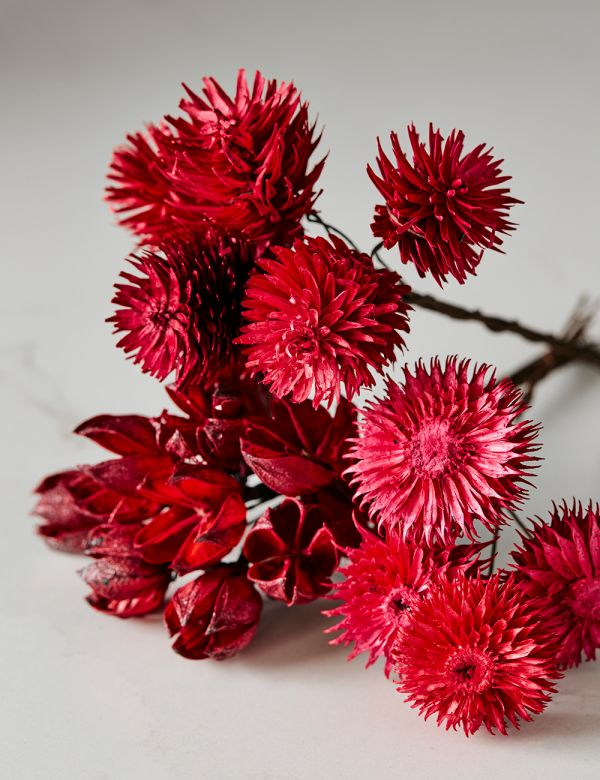Set of Three Dried Flower Stems - Red
