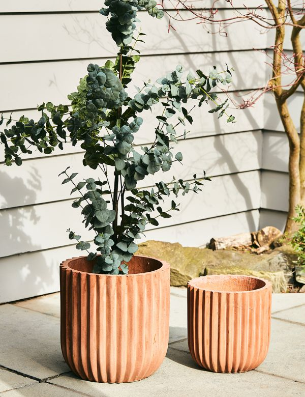 Set of Two Terracotta Outdoor Plant Pots