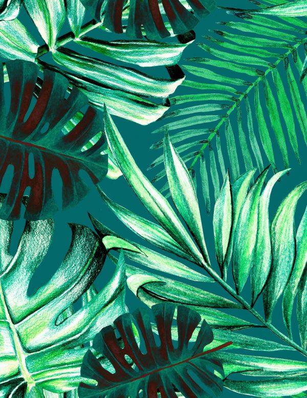 Mind The Gap Wallpaper Collection - Rainforest